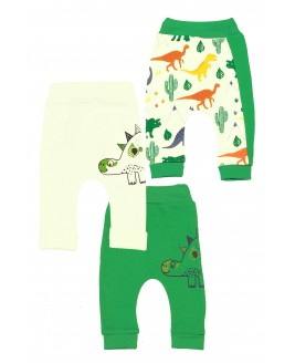 Big Dinosaur 3 Piece Trousers Green